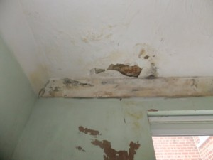 20130225_KitchinCeiling
